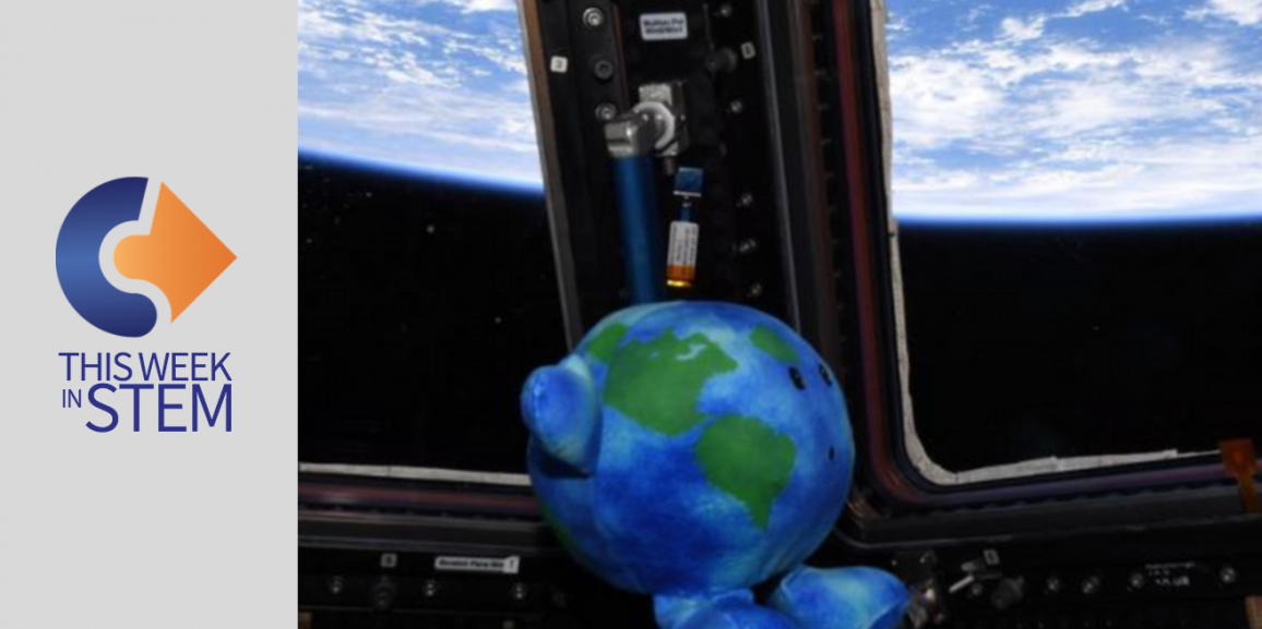 This Week in STEM: Navigating the web and toys in space