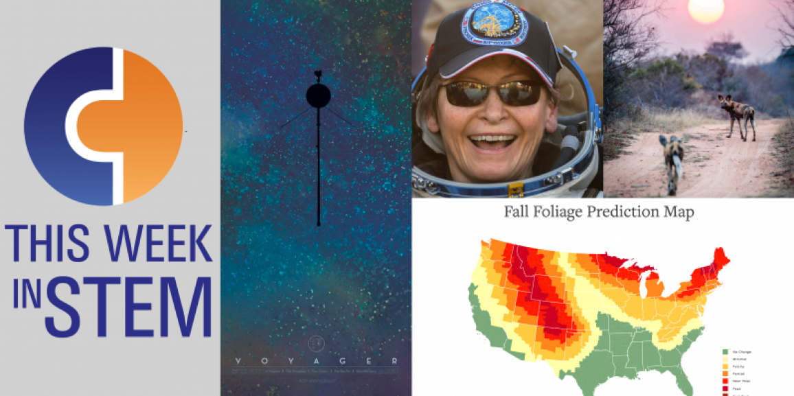 This Week in STEM: The Space Ninja Returns and Fall is Here